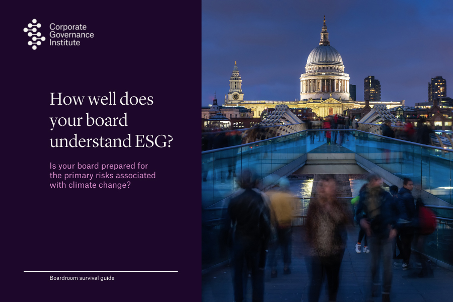 a directors guide to ESG